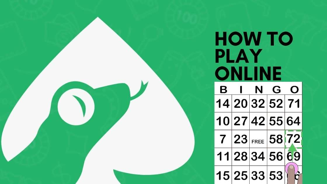How To Play Online Bingo?