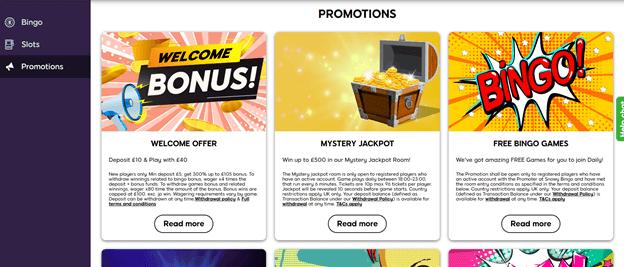 Snowy Bingo Bonus