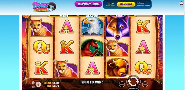 Fever Bingo Games